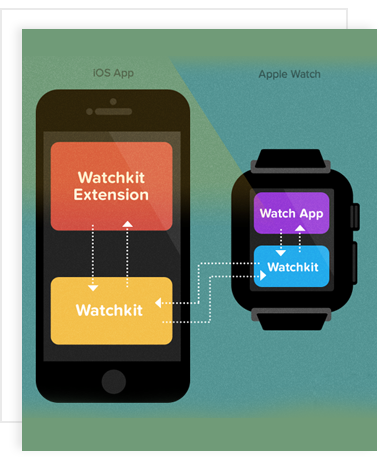 hire apple watch developers, hire apple watch application developer