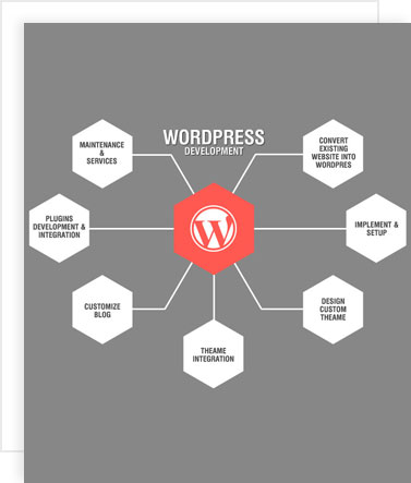 hire wordpress developers, hire wordpress application developer